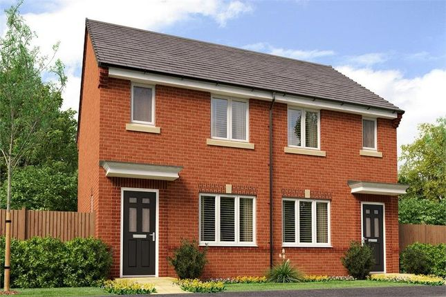 "Semi-detached house for sale in ""The Nevis Rk"" at Buttercup Gardens, Blyth"