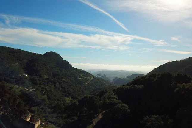 Thumbnail Land for sale in Casares, Spain