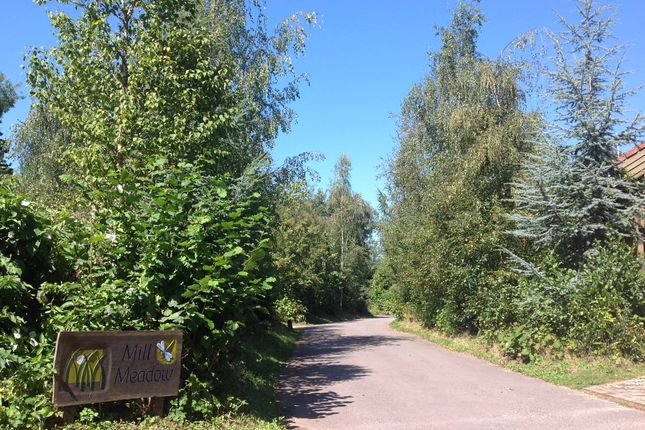 Thumbnail Land for sale in Plots For Sale, Eco Lodge Build, Mill Meadow Holiday Park, Taunton