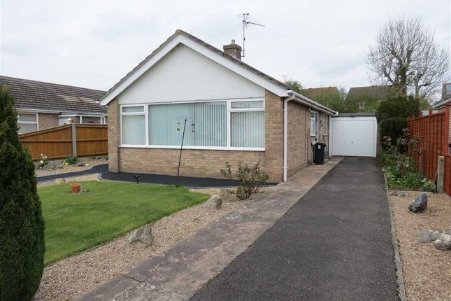Thumbnail Detached bungalow to rent in Millview Road, Heckington, Sleaford