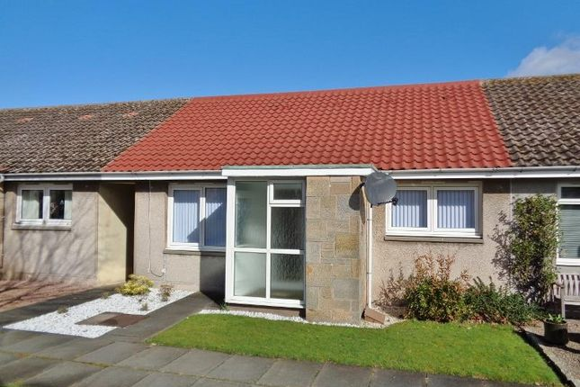 Thumbnail Semi-detached bungalow for sale in Pitcruvie Park, Lundin Links, Leven