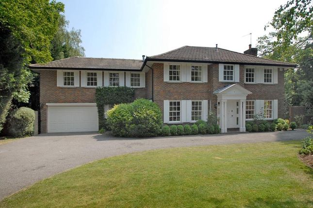 Thumbnail Detached house to rent in Patmore Lane, Burwood Park, Walton On Thames