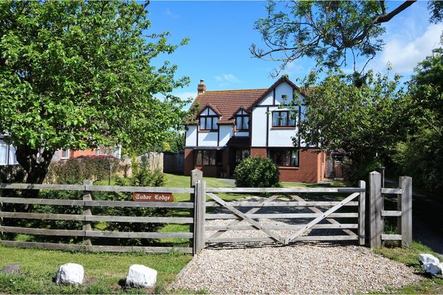 Thumbnail Detached house for sale in Rectory Way, Lympsham
