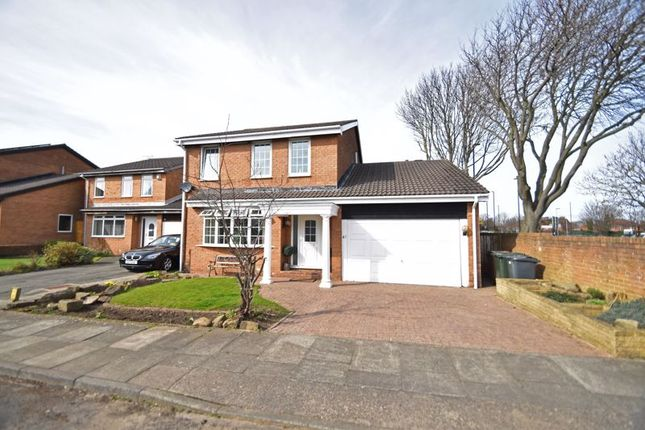 Thumbnail Detached house for sale in Kelvin Grove, North Shields