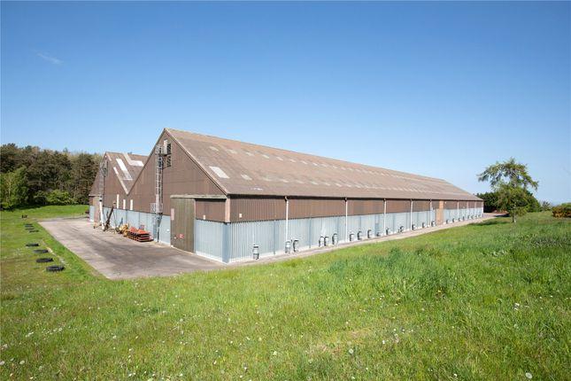 Thumbnail Land for sale in Lot 3 Swarland Grainstore, Kitswell Dene, Felton, Morpeth