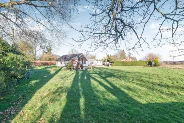 Garden of Ropley, Alresford, Hampshire SO24