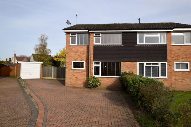 Thumbnail Semi-detached house to rent in Mallard Close, Kelvedon, Colchester