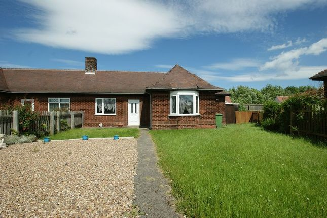 Thumbnail Semi-detached bungalow to rent in Coronation Drive, Shirebrook, Mansfield