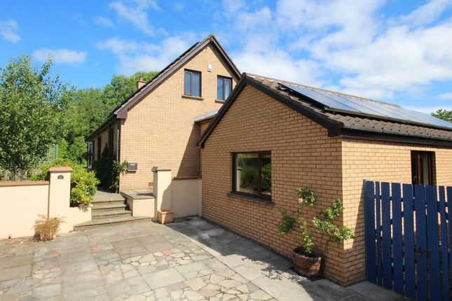Thumbnail Detached house for sale in Mullaghmore Park, Greenisland
