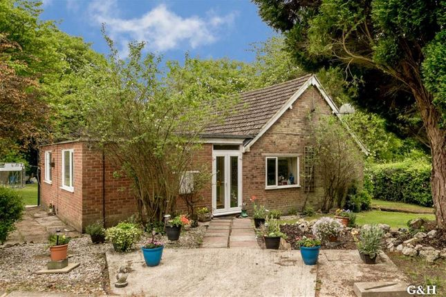 Thumbnail Detached bungalow for sale in Nickley Wood, Shadoxhurst, Ashford