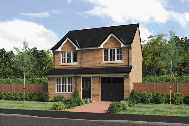 "Thumbnail Detached house for sale in ""The Larkin"" at Ladyburn Way, Hadston, Morpeth"