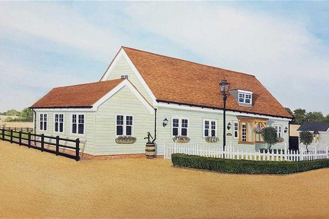 Thumbnail Detached house for sale in Moreton Road, Moreton, Ongar, Essex