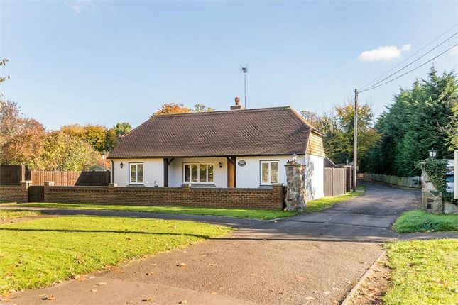 Thumbnail Detached bungalow for sale in Stroude Road, Egham, Surrey