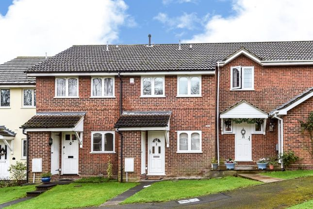 Thumbnail Terraced house to rent in Spruce Drive, Lightwater