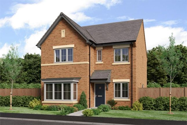 "Thumbnail Detached house for sale in ""The Mitford"" at Low Lane, Acklam, Middlesbrough"