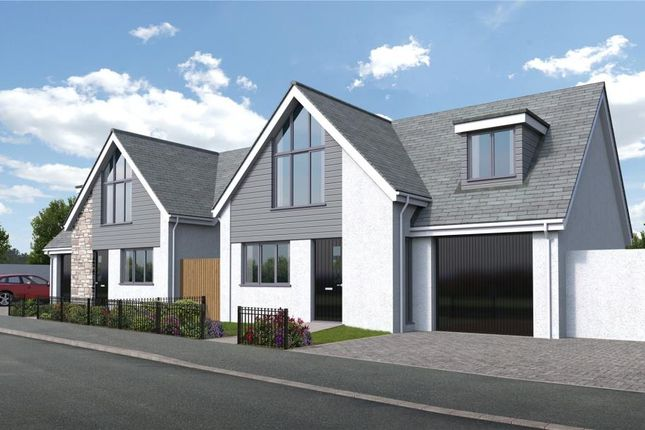 Thumbnail Detached house for sale in Plantation Way, Torquay, Devon