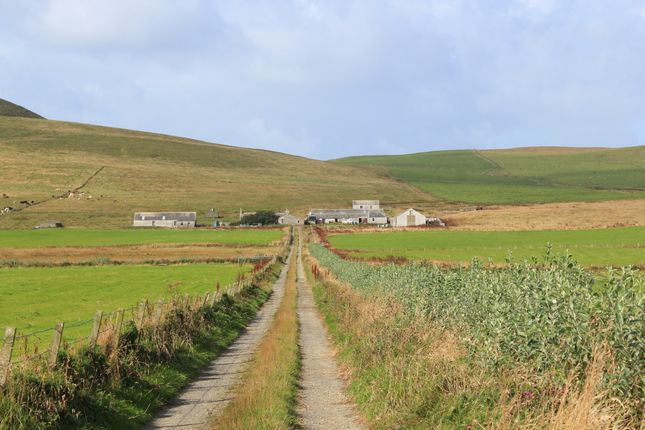 Thumbnail Detached house for sale in Westray, Orkney