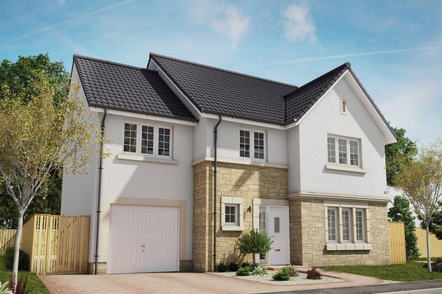 """Thumbnail Detached house for sale in """"The Darroch"""" at Eaglesham Road, East Kilbride, Glasgow"""