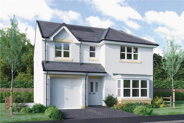 "Thumbnail Detached house for sale in ""Fletcher"" at Bellenden Grove, Dunblane"