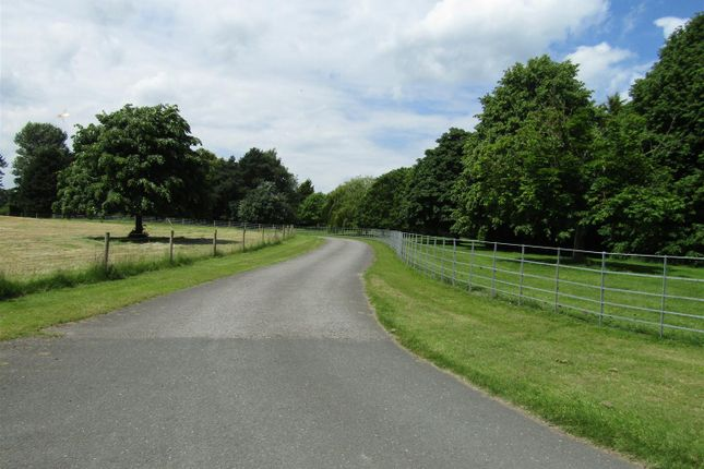 Thumbnail Property for sale in Boroughbridge, York