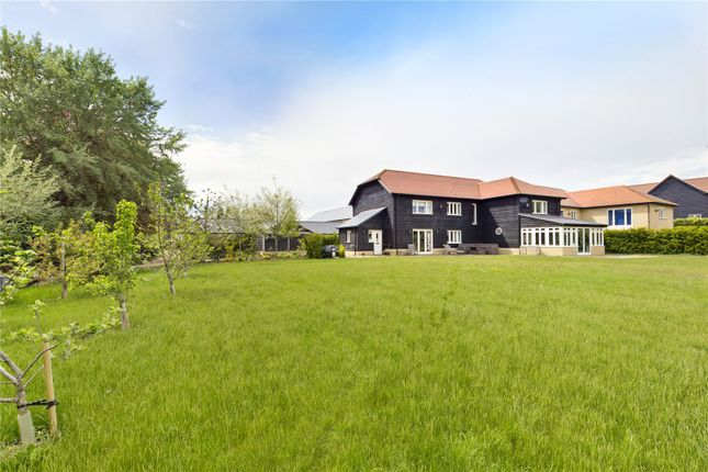 Thumbnail Detached house for sale in Randalls Close, Wrestlingworth, Sandy