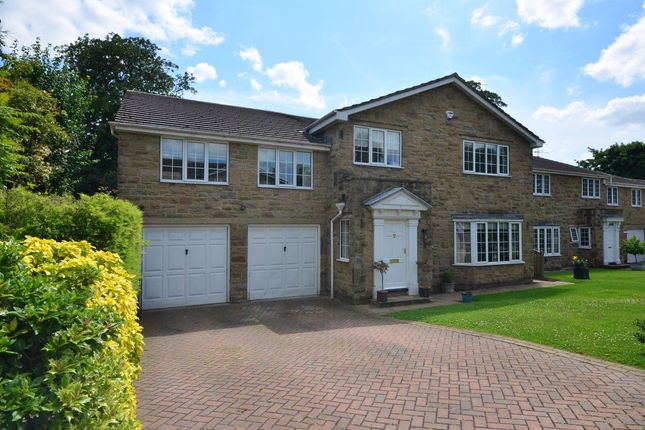 Thumbnail Detached house to rent in Beechwood Dale, Ackworth, Pontefract