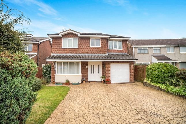 Thumbnail Detached house to rent in Scoular Drive, Ashington