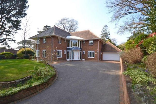 Thumbnail Detached house for sale in The Avenue, Poole, Bournemouth