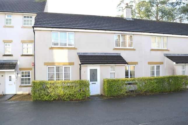 Thumbnail Semi-detached house to rent in Myrtles Court, Pillmere, Saltash