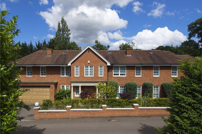 Thumbnail Detached house to rent in Willowbrook, White Lodge Close, Kenwood, London