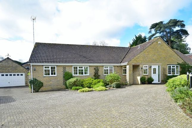 Thumbnail Detached bungalow for sale in Oborne, Sherborne