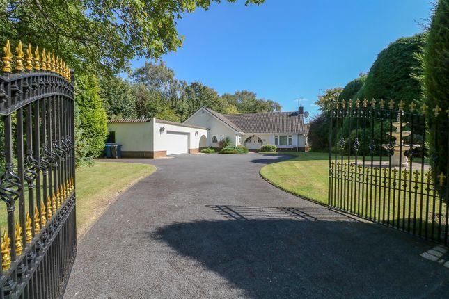 Thumbnail Detached bungalow for sale in The Headlands, Roman Road, Little Aston Park