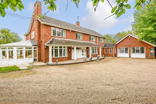Thumbnail Detached house for sale in Great Ellingham, Attleborough