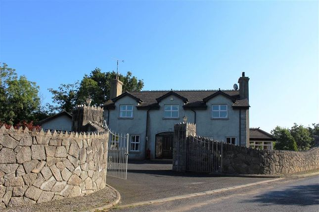Thumbnail Detached house for sale in Glen Road, Newry