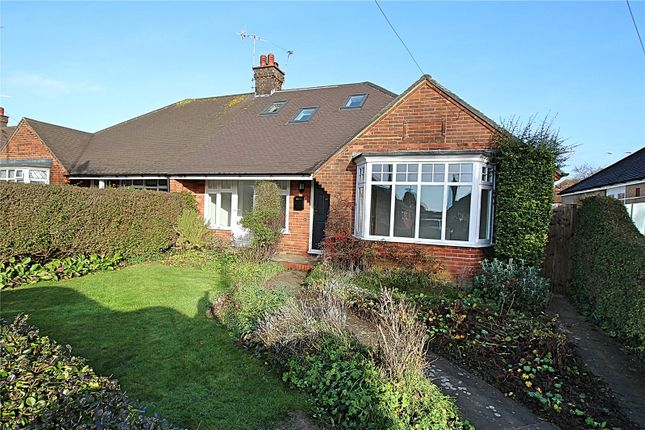 Thumbnail Bungalow for sale in Lindum Road, Worthing, West Sussex