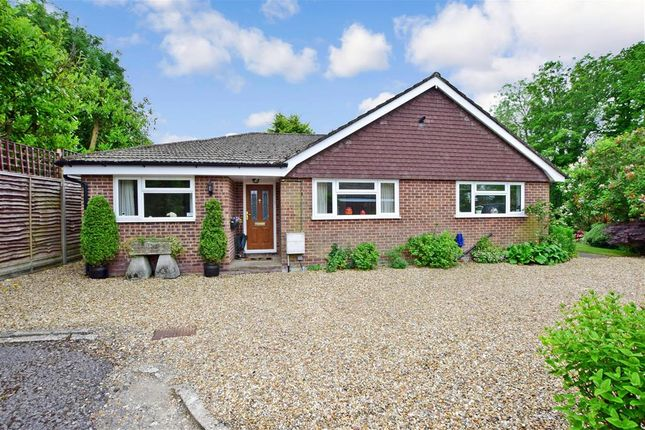 4 bed detached bungalow for sale in Heatherfield, Buriton, Petersfield, Hampshire GU31