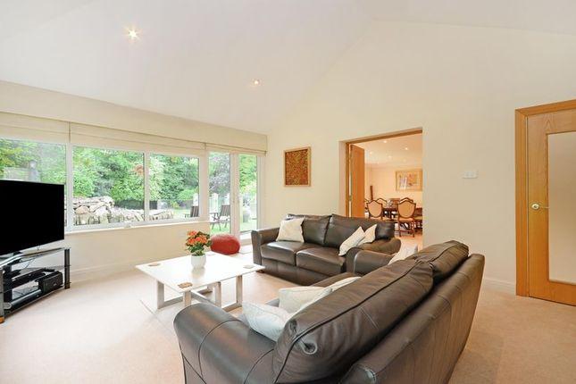 Family Room of Rivendell, Derriman Glen, Ecclesall, Sheffield S11