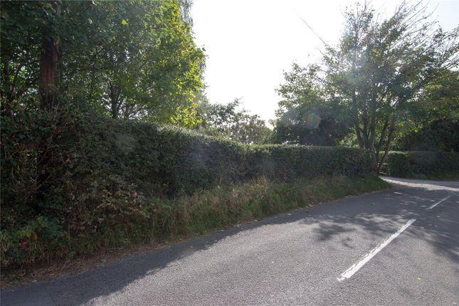 Picture No. 41 of Windermere Road, Moseley, Birmingham, West Midlands B13