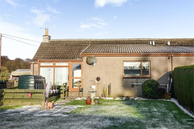 Thumbnail Semi-detached bungalow for sale in Carmyllie, Carmyllie, Arbroath, Angus