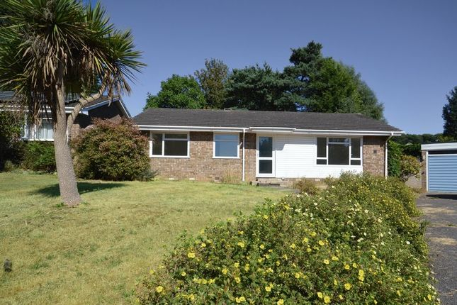 Thumbnail Bungalow to rent in Pound Close, Headley, Bordon
