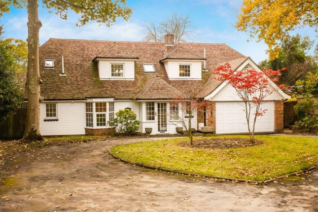 Thumbnail Detached house for sale in Glengorse, Battle