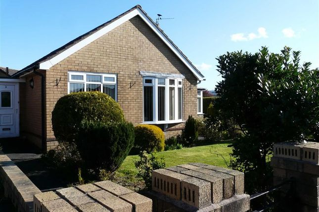 Thumbnail Detached bungalow to rent in Dorchester Road, Garstang, Preston