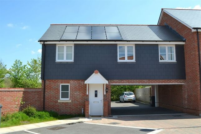 Thumbnail Semi-detached house to rent in Lower Three Acres, Cranbrook, Exeter, Devon