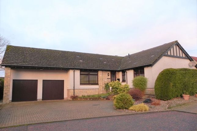 Thumbnail Bungalow for sale in Drimmie Place, Letham, Forfar