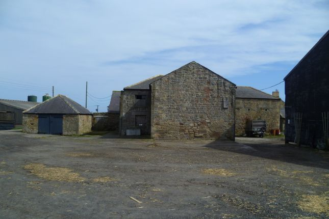 Thumbnail Land for sale in Longhoughton, Alnwick