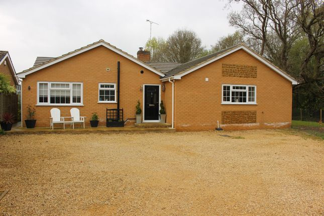 Thumbnail Detached bungalow for sale in Rushmead Close, King's Lynn, South Wootton