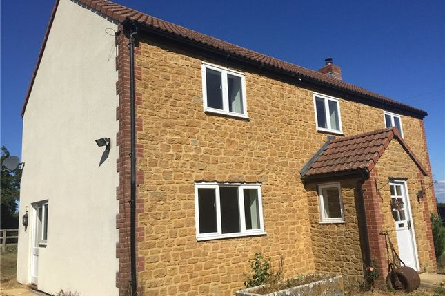 Thumbnail Detached house to rent in Pipplepen Lane, South Perrott, Beaminster