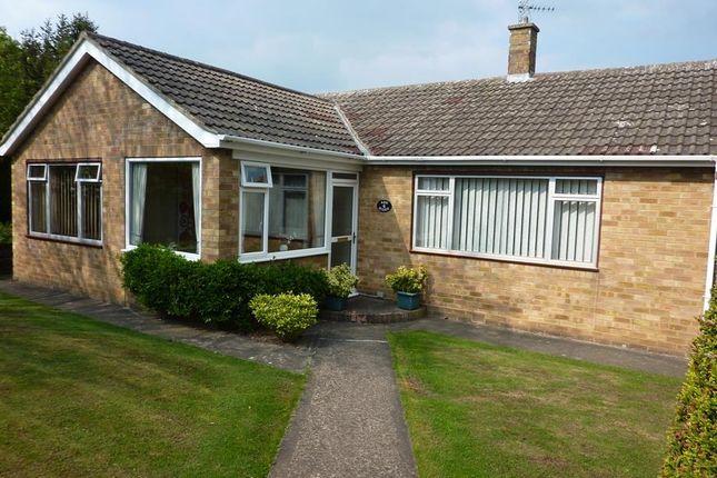 Thumbnail Detached bungalow for sale in Ash Ridge, Northallerton
