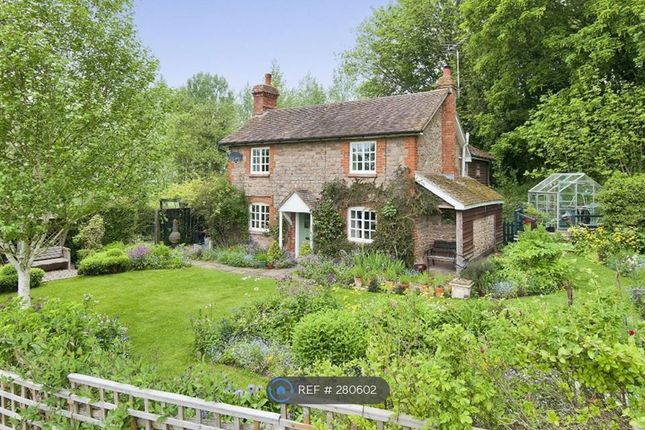 Thumbnail Detached house to rent in Westhide, Hereford