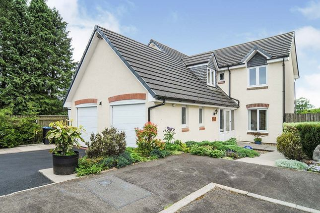 Thumbnail Detached house for sale in Beech Court, Parkgate, Dumfries, Dumfries And Galloway